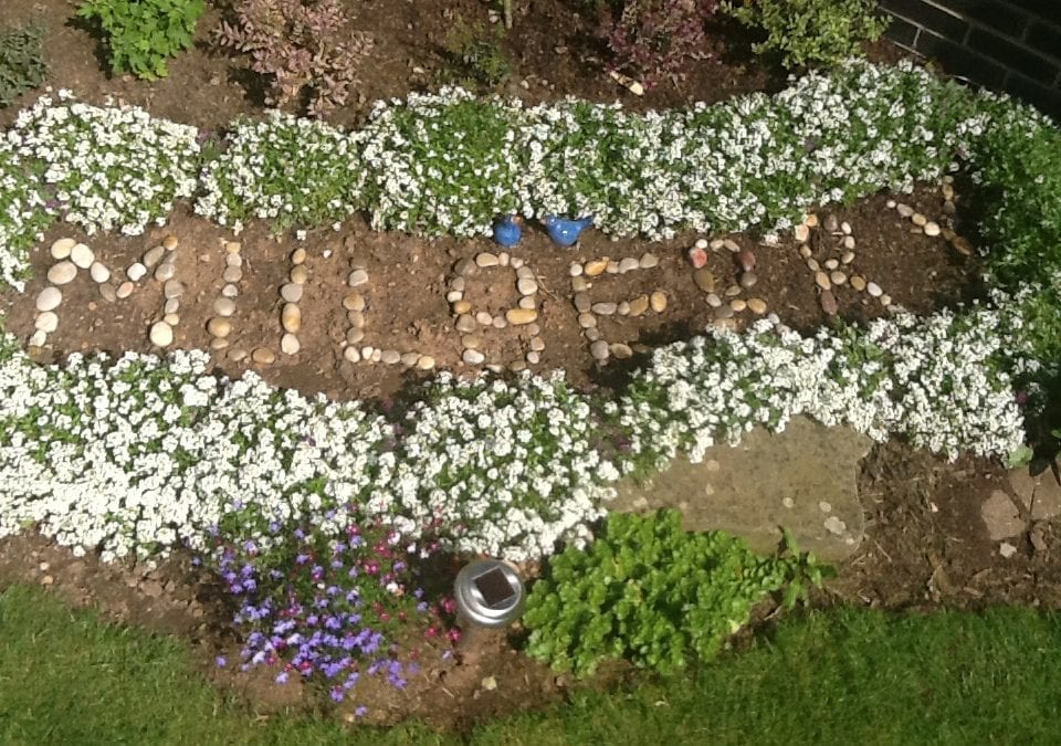 Mulberry Ward wins two awards in Cheltenham in Bloom competition